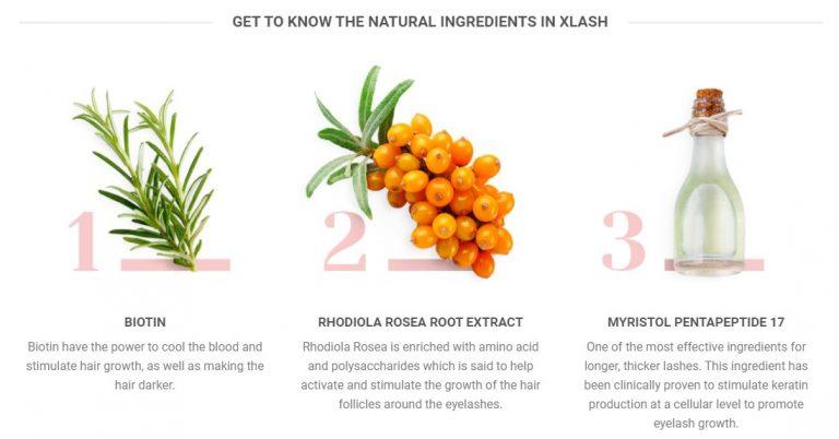 xlash eyelash growth enhancer serum singapore ingredients