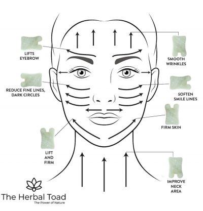 Guasha facial training course singapore